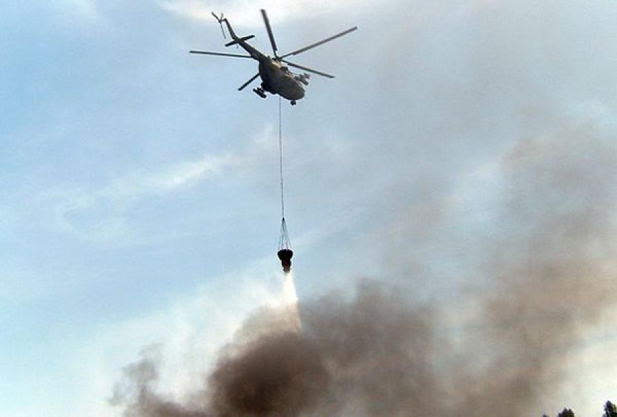 Когда потушат пожары в лесах Тверской области?