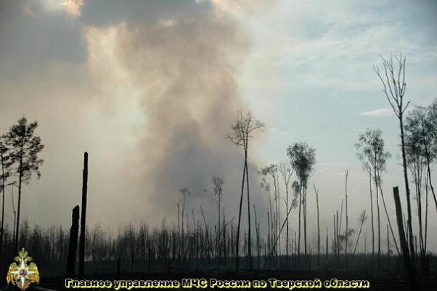 В Тверской области с начала лета зарегистрировано около 200 пожаров