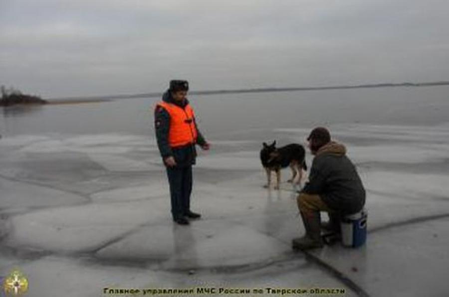 Пожарные спасли троих мужчин, провалившихся под лед