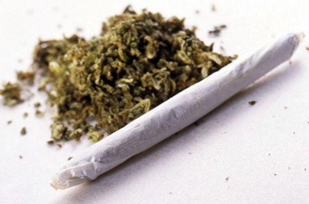 23-03-marihuana