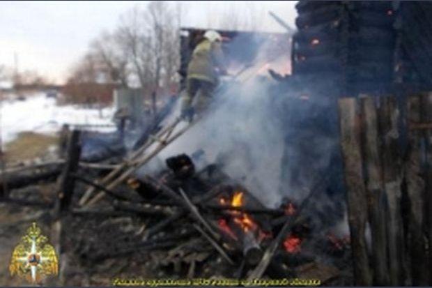 Пожар в Андреапольском районе_2103