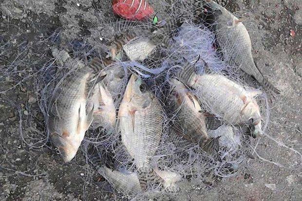 Браконьер из Мурманска поехал ловить рыбу в Терский район