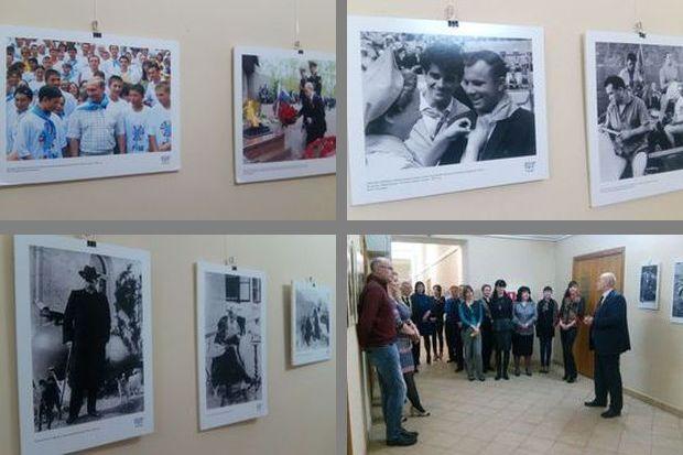 Выставка в ТГД
