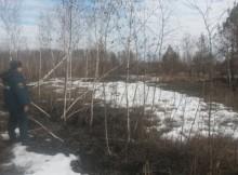 01-04-лес-пожар1