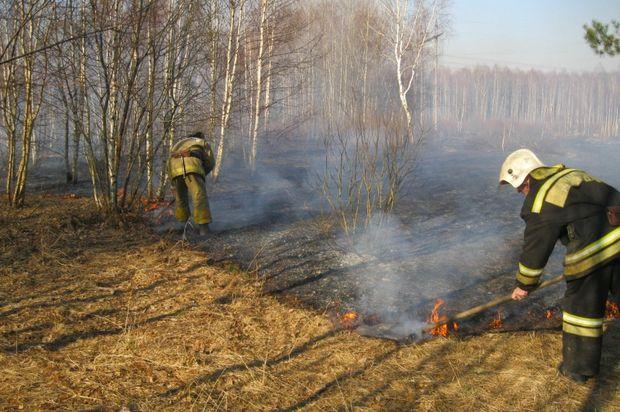 13-04-пожары1