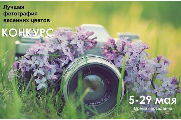13-05-цветы