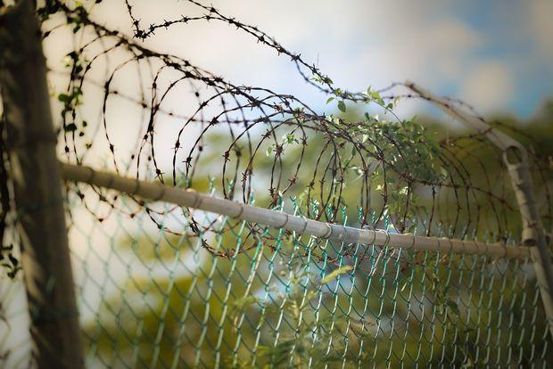 25-05-тюрьма