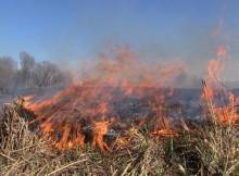 Горит сухая трава_пожар