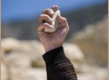 Рука с камнем_камень