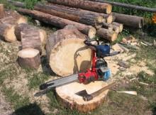 вырубка леса-бензопила