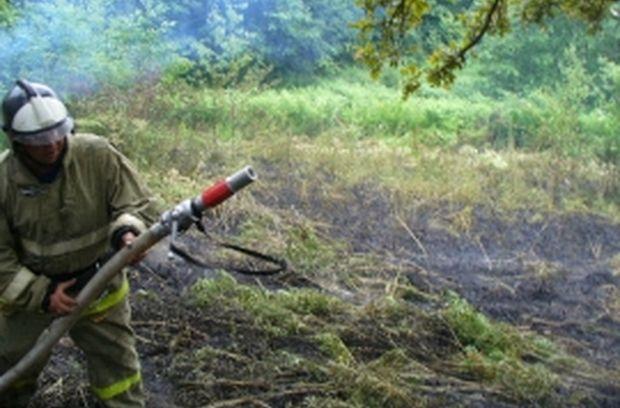 02-07-лес-пожары