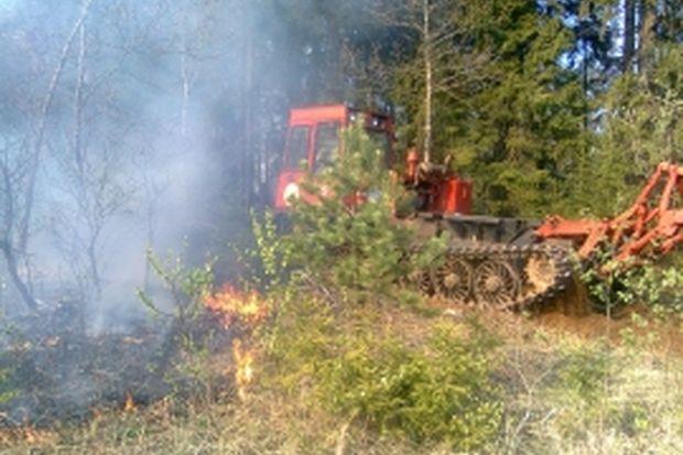 06-07-пожар-лес1