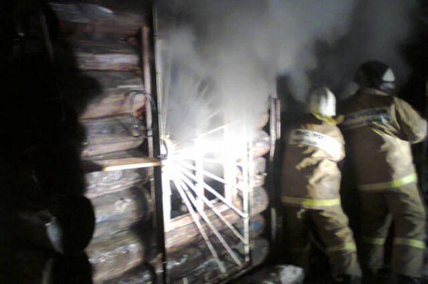 Пожар_Торопецкий район_3107
