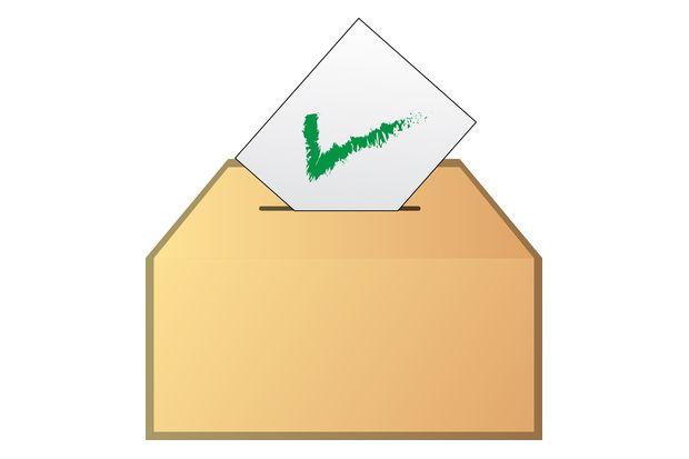 03-08-выборы