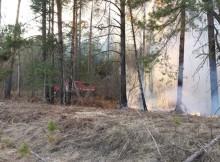 25-08-пожар-лес
