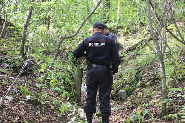 Полицейские в лесу
