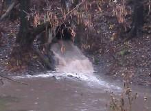 сточные воды в реку