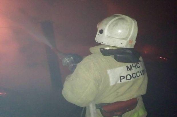 Пожар_Оленинский район