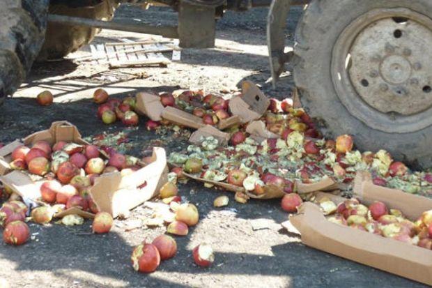 Уничтожение фруктов и овощей
