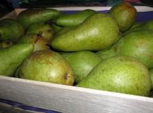 Ящик груш