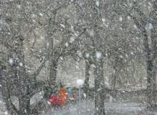 21-02-снег-метель