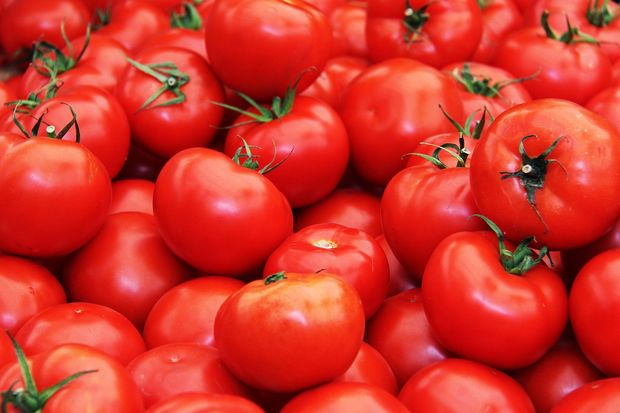 24-03-помидоры