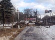 парк победы_аварийные деревья