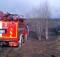 24-04-лес-пожар