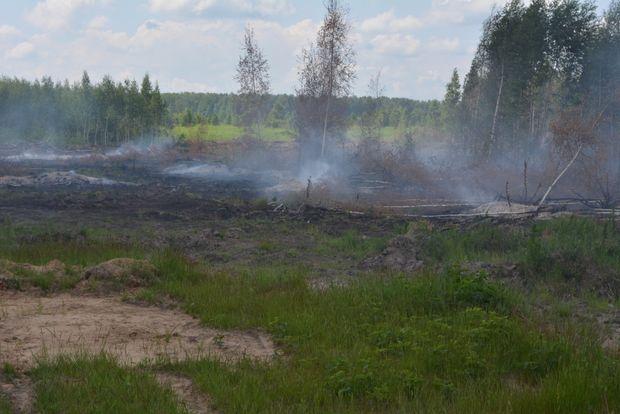 пожар_Бологовский район