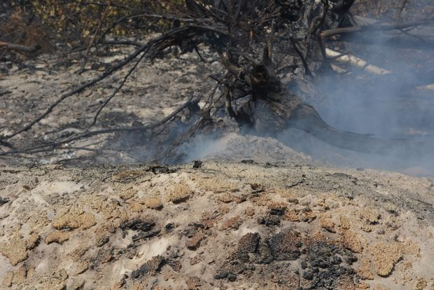торфяной пожар