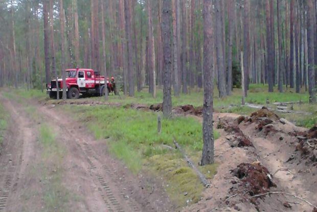 05-06-лес-пожар