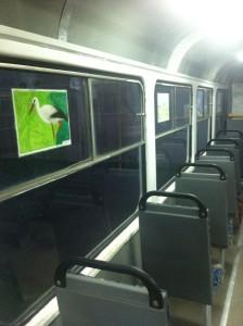 зеленый трамвай-2