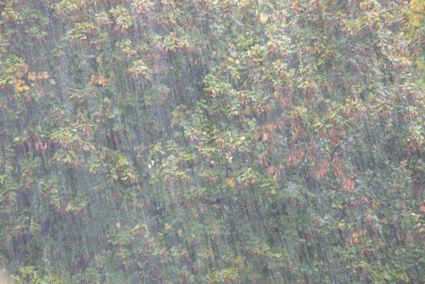 03-07-дождь