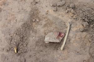археология-4