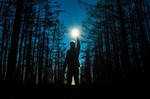 лес_ночь_человек