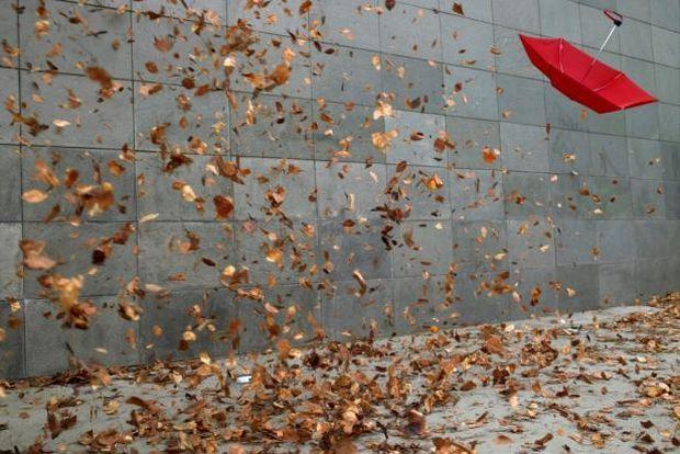сильный ветер_осень