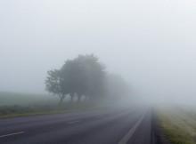 туман_дорога