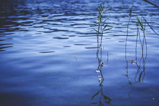 14-12-озеро