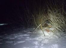 браконьерство-зима-лось
