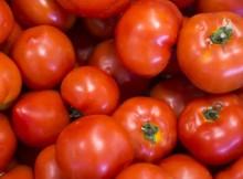 10-06-помидор