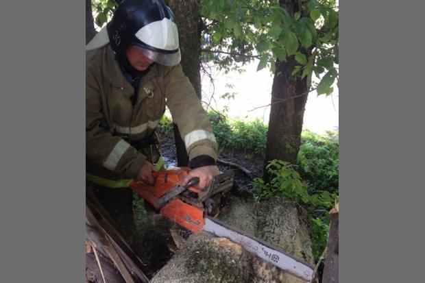 западная двина-пожарные