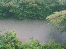 26-07-дождь