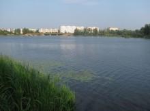 03-08-донховка