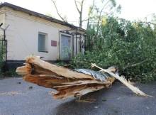 05-08-ураган-ржев4