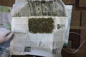 09-11-марихуана2