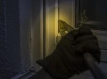 17-11-грабитель-окно