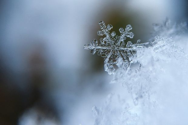 Вночь наРождество предполагается метель игололедица