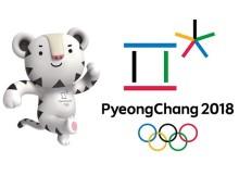 Зимняя Олимпиада в Корее