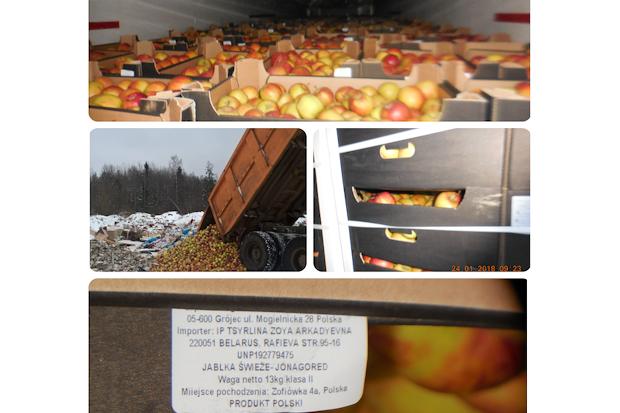 уничтожение яблок