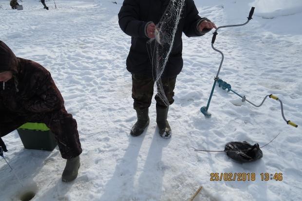 28-02-браконьеры
